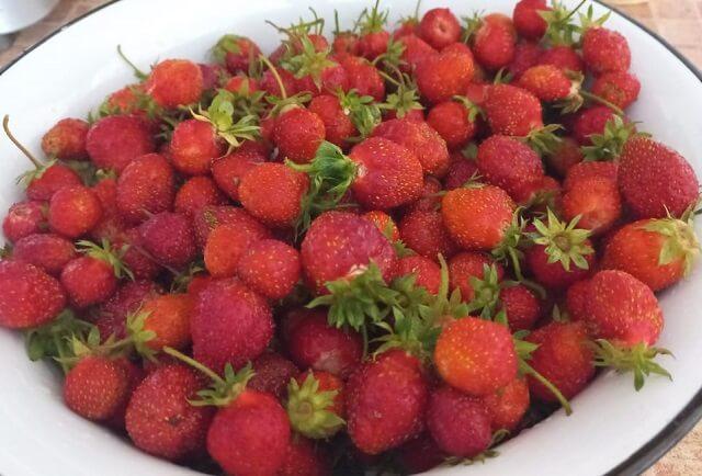 Варенье из клубники густое на зиму – рецепт с целыми ягодами