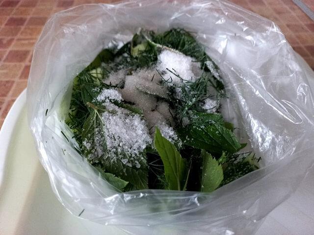 Малосольные огурцы в пакете – рецепты быстрого приготовления